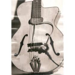 Micro S 51 sur une guitare avec des ouies