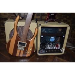 Ampli M12 et guitare Octave 3 fabriqué par Yves Guen
